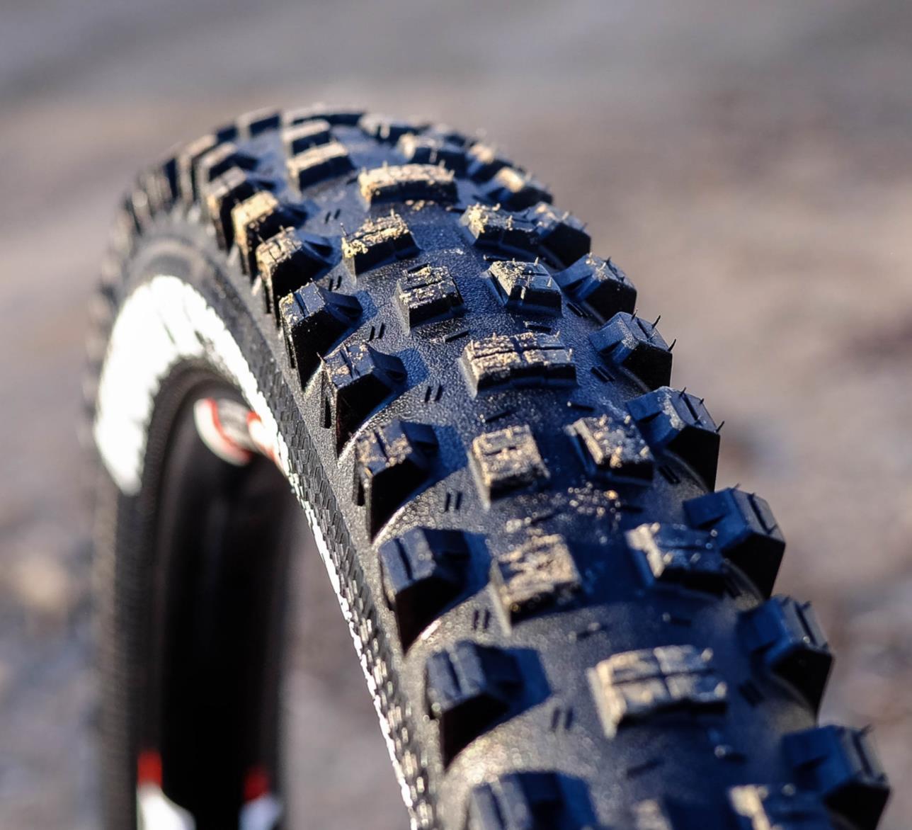 Goodyear Newton-ST Ultimate R/T Tubeless MTB Enduro Tyre